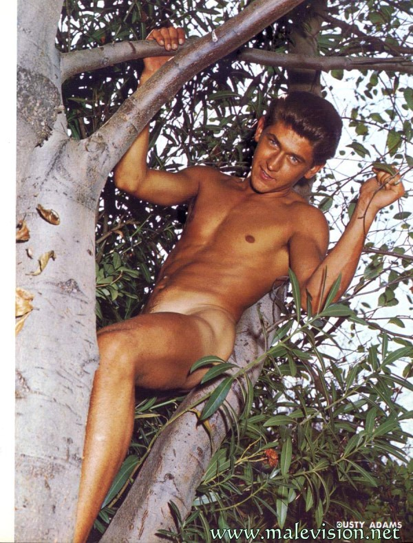 nudity boy in tree